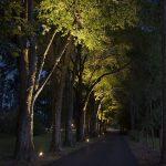 walkway-driveway-38