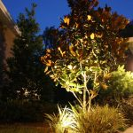 general_outdoor_lighting (301)