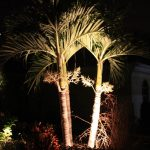 general_outdoor_lighting (363)